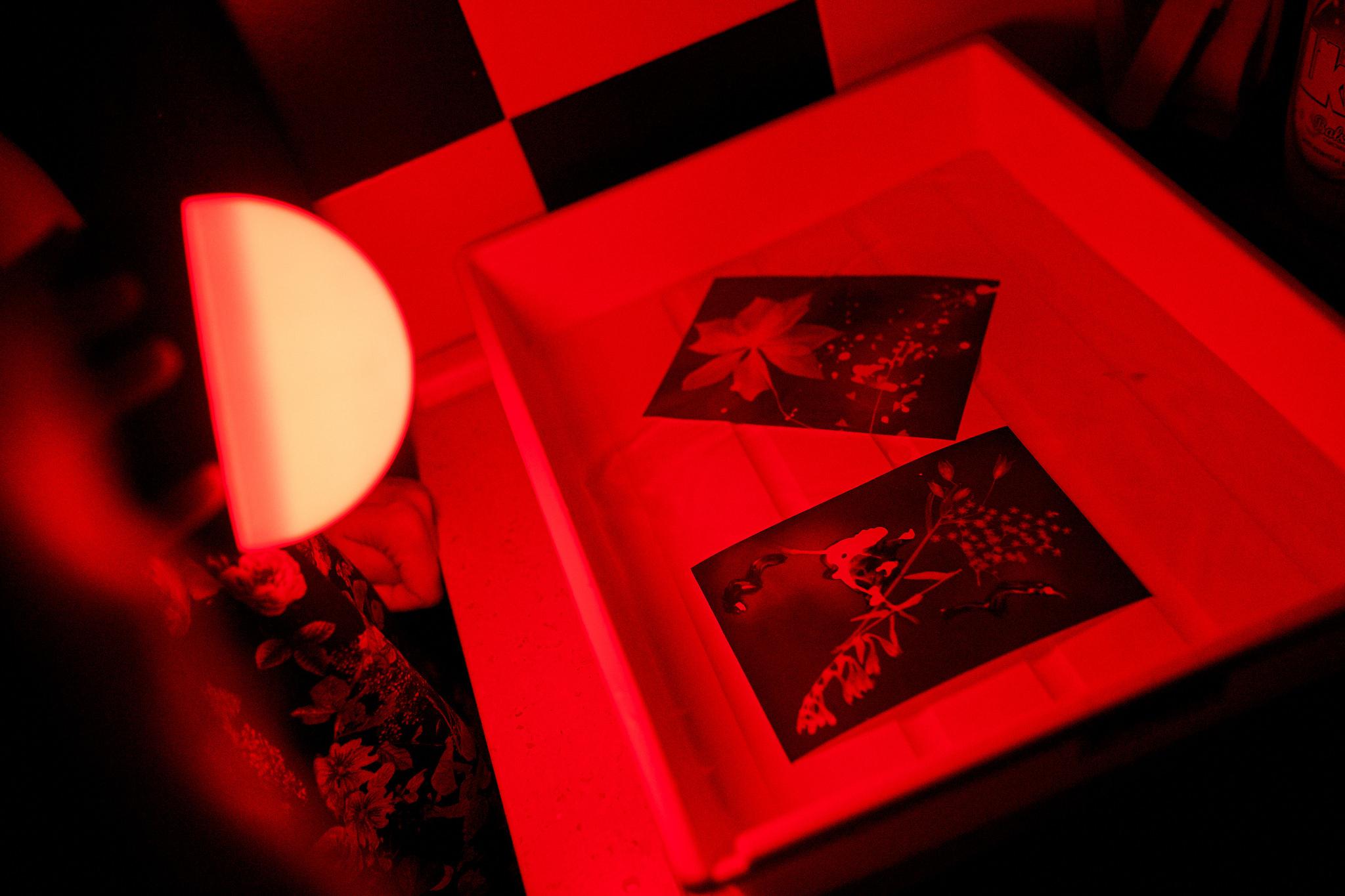 PHOTOGRAMS – A Workshop For Children Lead By Snježana Josipović
